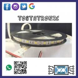 Tira de LED blanca 5050 5m
